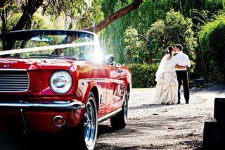 Se alquila Ford Mustang 1965 Bodas / Cortometrajes