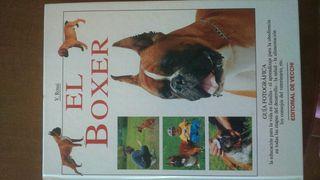 libros del boxer