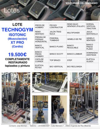 LOTE GIMNASIO TECHNOGYM ISOTONIC