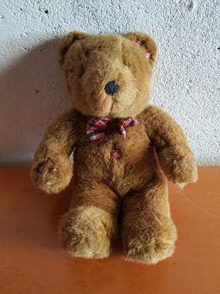 Profesor Teddy