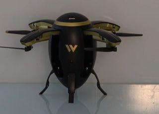 Egg drone