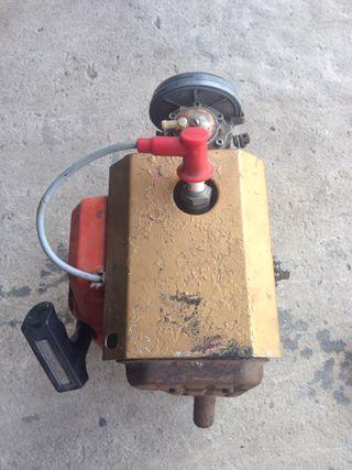 Motor de kart