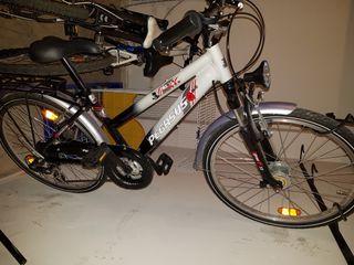 "Bicicleta PEGASUS FREE 33 Aluminio 24"""