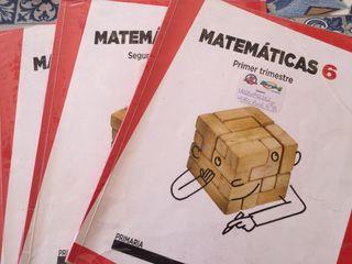Matematicas 6 curso