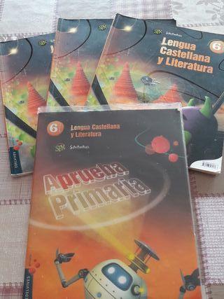 libros 6 primaria lengua edelvives