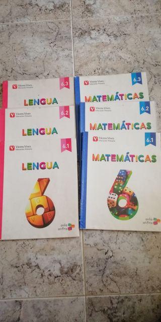 Lote de Libros de 6° De primaria