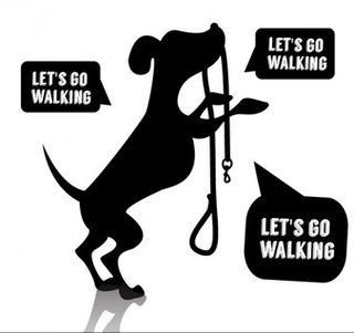 Paseo para perros con estimulación