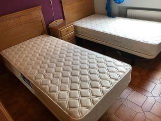 Camas, somier, colchón, cabecero y mesilla.