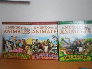 Libros infantiles El mundo de los Animales