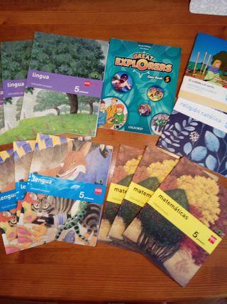 Lote libros CIA Maria Ferrol 5° primaria