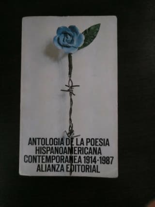 Libro Literatura