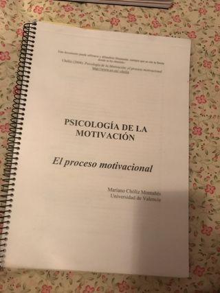Libro El proceso motivacional