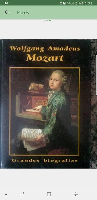 colección de grandes biografías