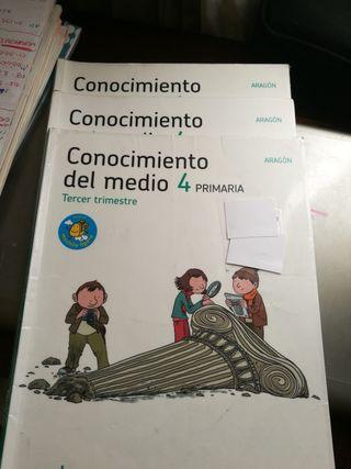 Lote libros conocimiento del medio 4 de primaria
