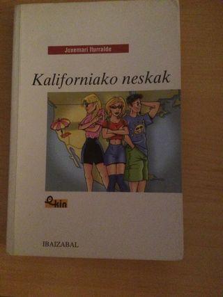 Libro lectura en euskera