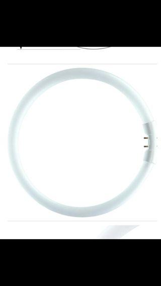 Tubos fluorescentes circulares 4
