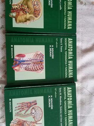 libros de anatomia humana