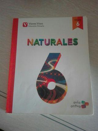 Naturales 6 primaria