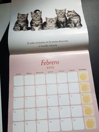 Regalo Calendario Gatitos 2015