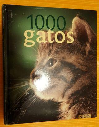 LIBRO DE 1000 GATOS