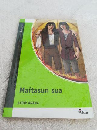 Libro Euskera lectura MAITASUN SUA