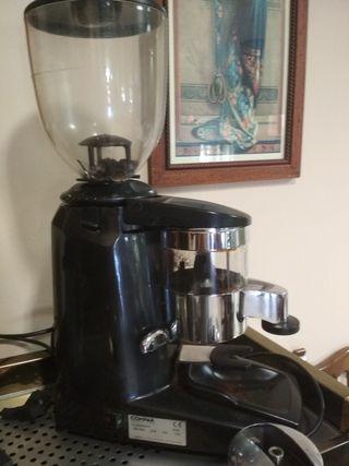 Molinillos café