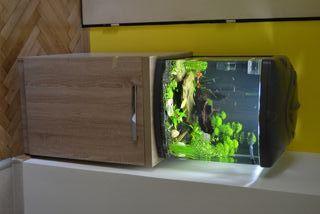 acuario sera cube