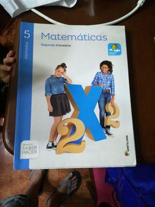 Libros 5 primaria santillana