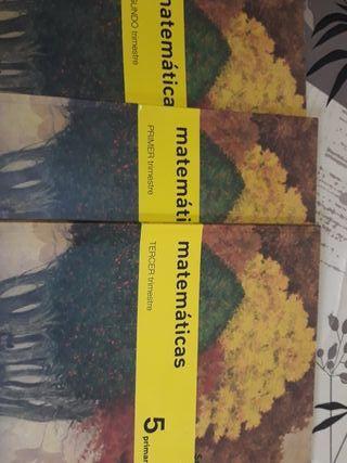 libros matematicas quinto de primaria sm