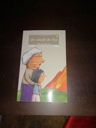 libro juvenil