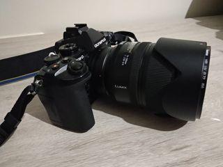 Olympus E-M1 Panasonic Leica 14-50 2.8-3.5