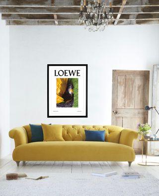 LOEWE Láminas Decoración