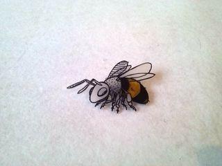 broches bichos avispa, moscón, libélula, mariposa