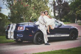 Mustang/corvette