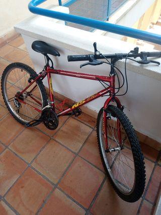 Bicicleta cabello