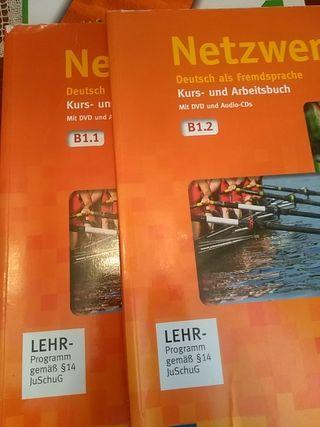 Libros de alemán Netzwerk B1.1 y B1.2