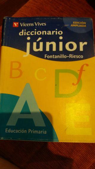 Diccionario Júnior (Vicens Vives)