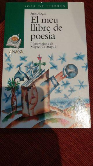El meu llibre de poesia