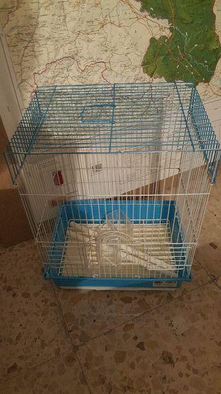 Jaula pajaro pequeño periquito o agaporni