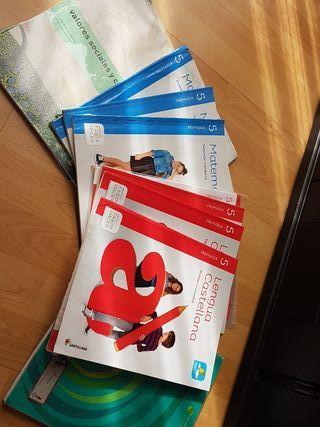LOTE libros de texto 5 primaria mates , lengua