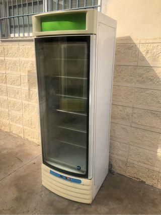 Armario exhibidor congelador