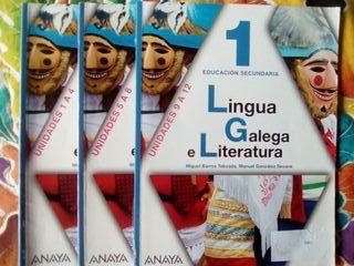 Libro lingua galega