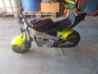 Moto polini