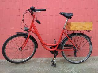 Bicicleta Amat Florida