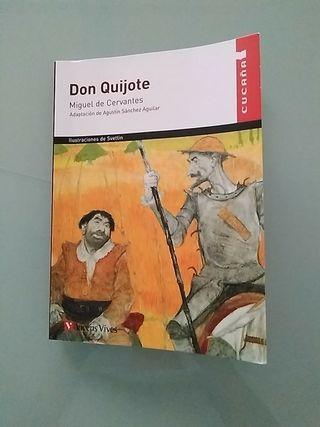 Don Quijote adaptación Agustín Sanchez Aguilar