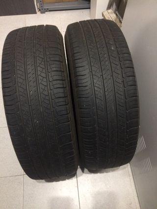 Ruedas coche Michelin 225
