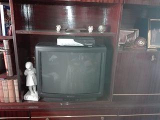 televisor con mando a distancia.