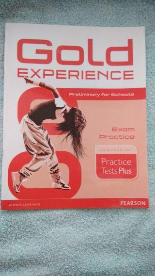 GOLD EXPERIENCE EXAM PRACTICE