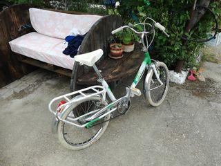 bici paseo Dino