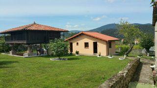 alquilo hórreo+casa+finca . Asturias